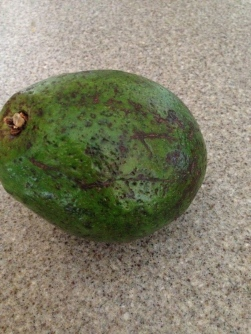 A recent avocado that graced my kitchen.  Ugly but delicious!
